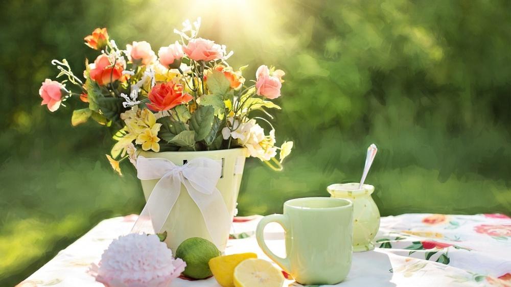 Беспроигрышный способ зазывания весны вжилье— завтрак всаду, невыходя издома. Плетеные стулья,