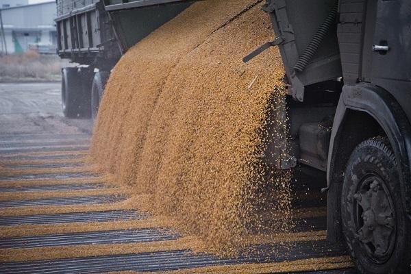 Украина увеличила экспорт муки втекущем сезоне
