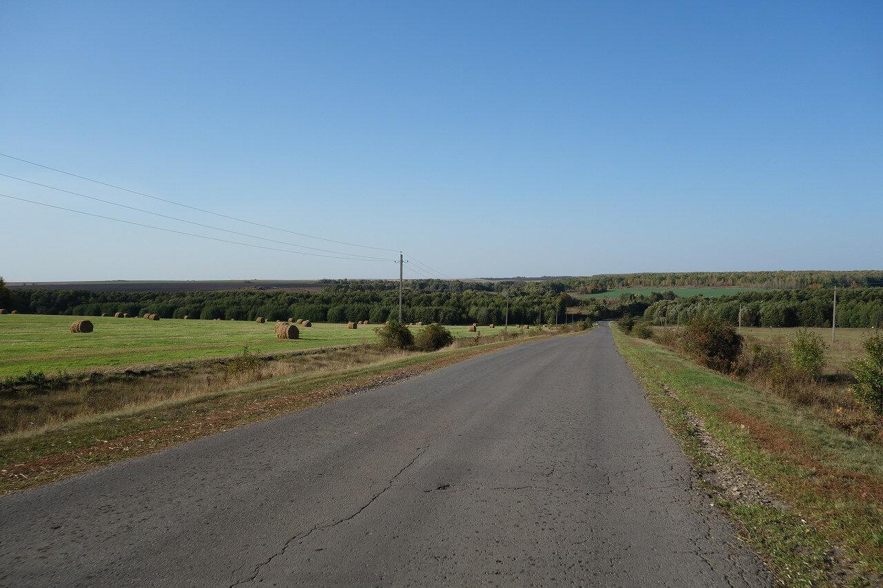 скошенное поле и ерлинский лес