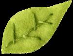 kwiniecki_lovebloomshere_leaf.png