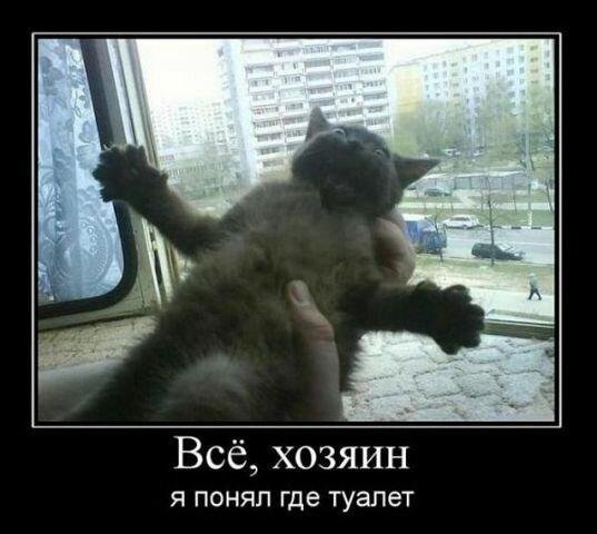 http://img-fotki.yandex.ru/get/5641/194408087.0/0_8db63_ef92fbb7_XL.jpg