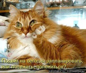 http://img-fotki.yandex.ru/get/5641/194408087.2/0_921f9_7cbca19d_M.jpg