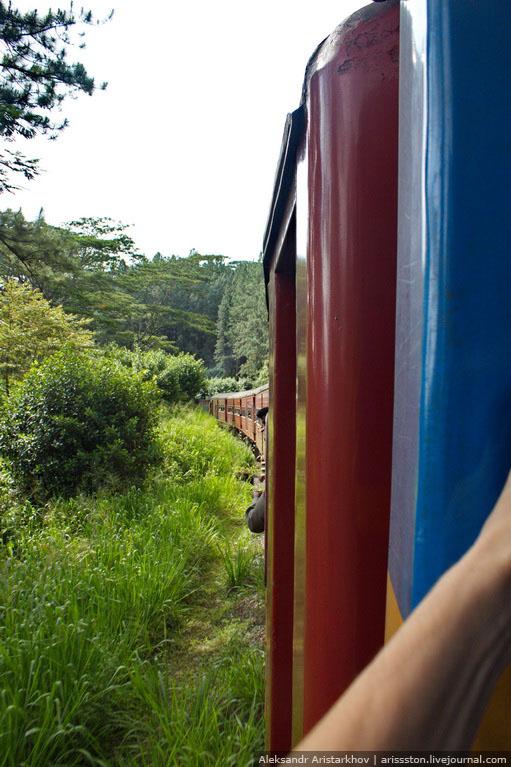 Шри-Ланка_Как угнать поезд_30
