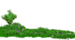 grassy.png