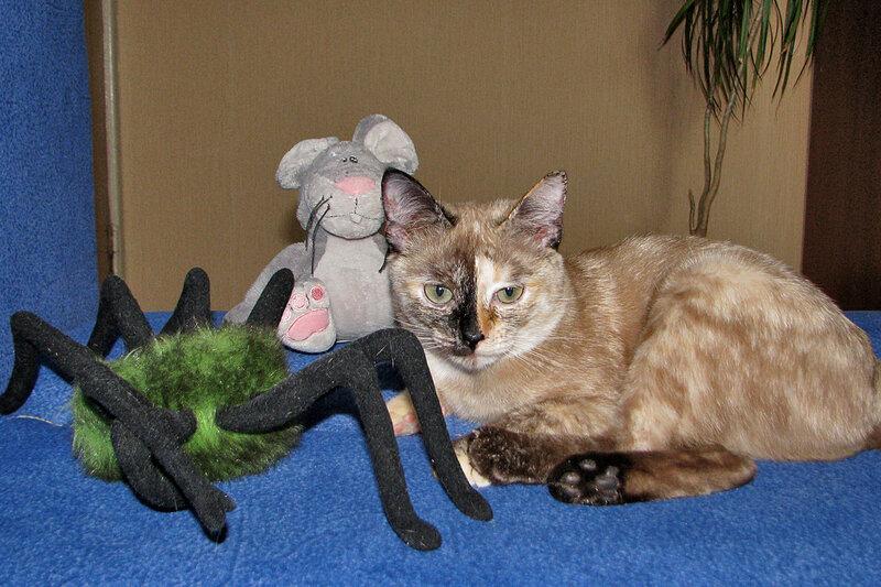 Маруся и её игрушки