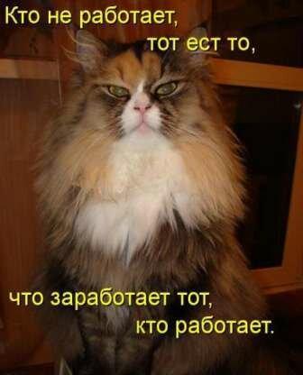 http://img-fotki.yandex.ru/get/5641/59709858.31/0_f6637_30aabcb_XL.jpg