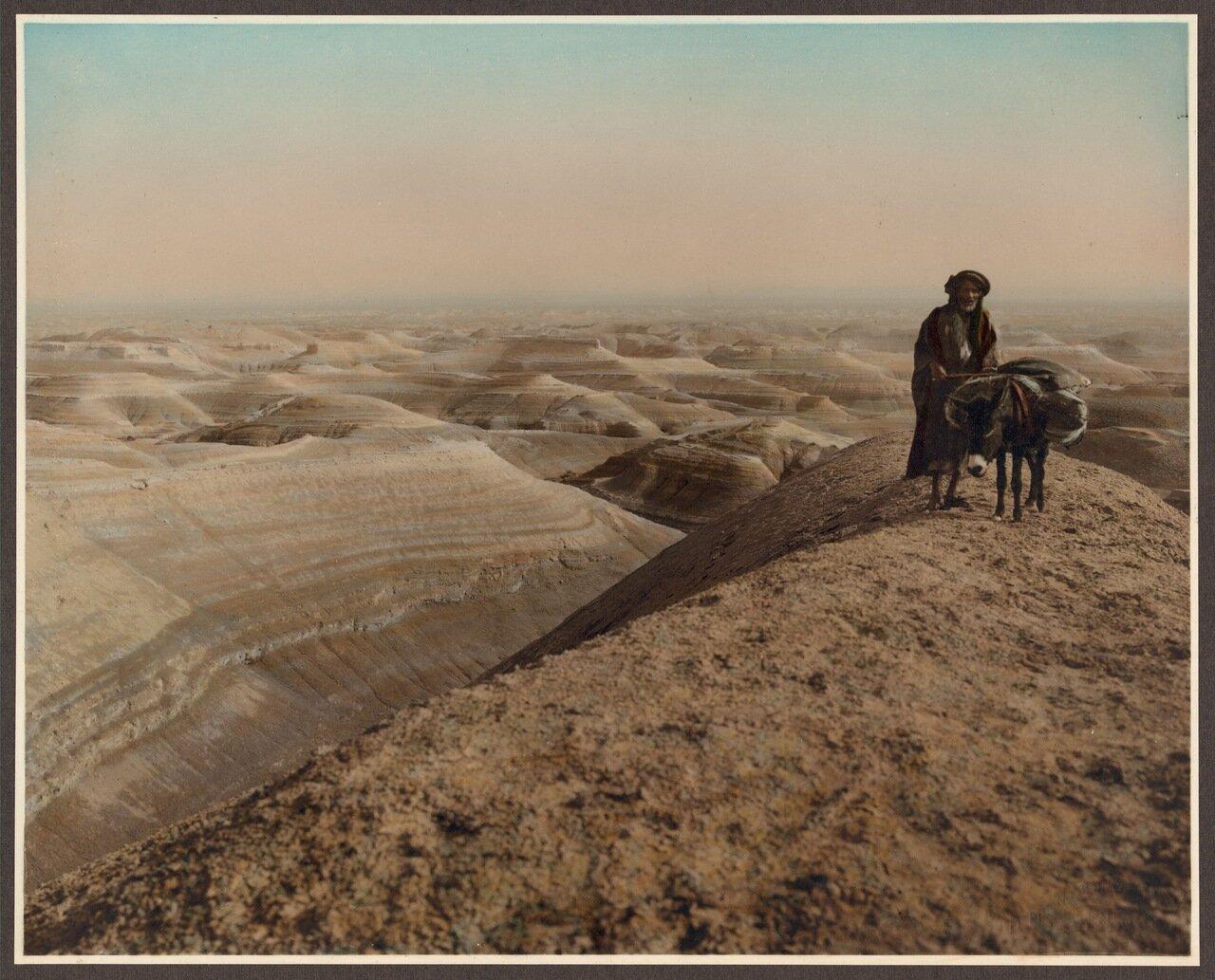Человек с ослом рядом с Мертвым морем