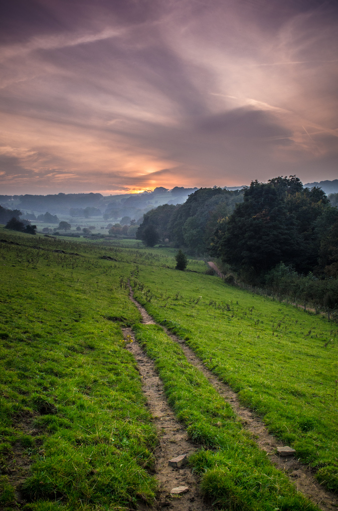 Landscapes by David Vickers