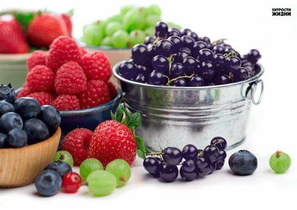 ТОП-10 продуктов, снижающих риск сердечно-сосудистых заболеваний
