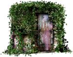 feli_l_door with leaves2.png