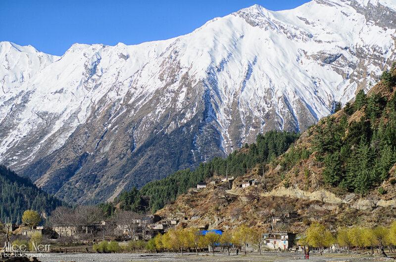 вид от входа в наш гесхаус в Кобанге, гималаи, непал, горы, снежники