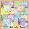 Скрап-набор Feline Fun 0_b2b52_7ba012df_XS