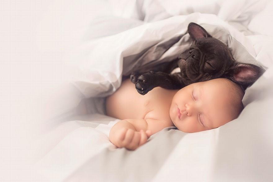 1. «Щенок Фарли очень нежный и неуклюжий, как самый настоящий ребенок».