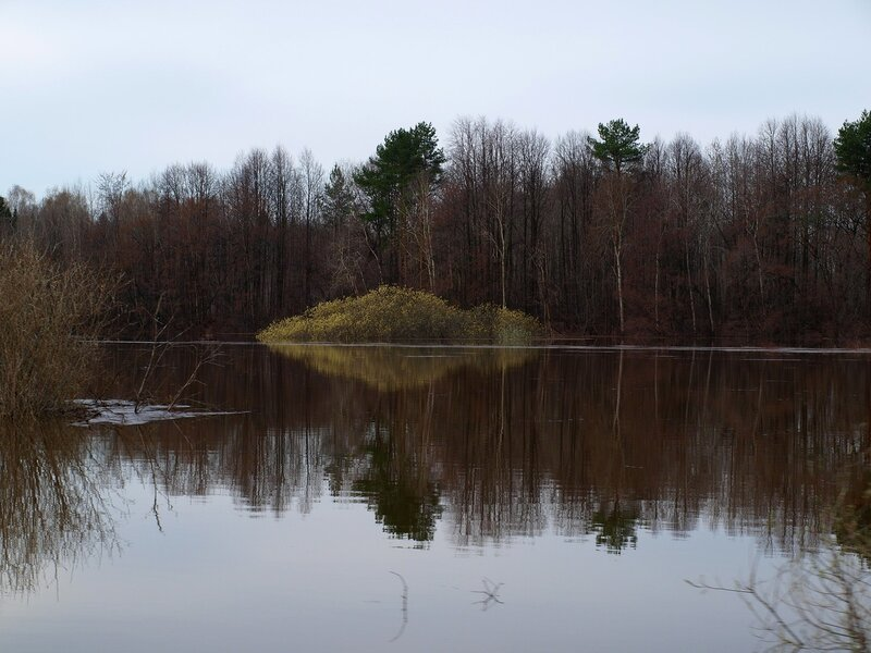 Озеро Просное P4281210