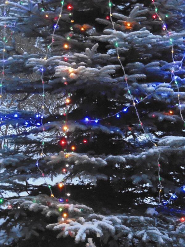 Дни перед Рождеством