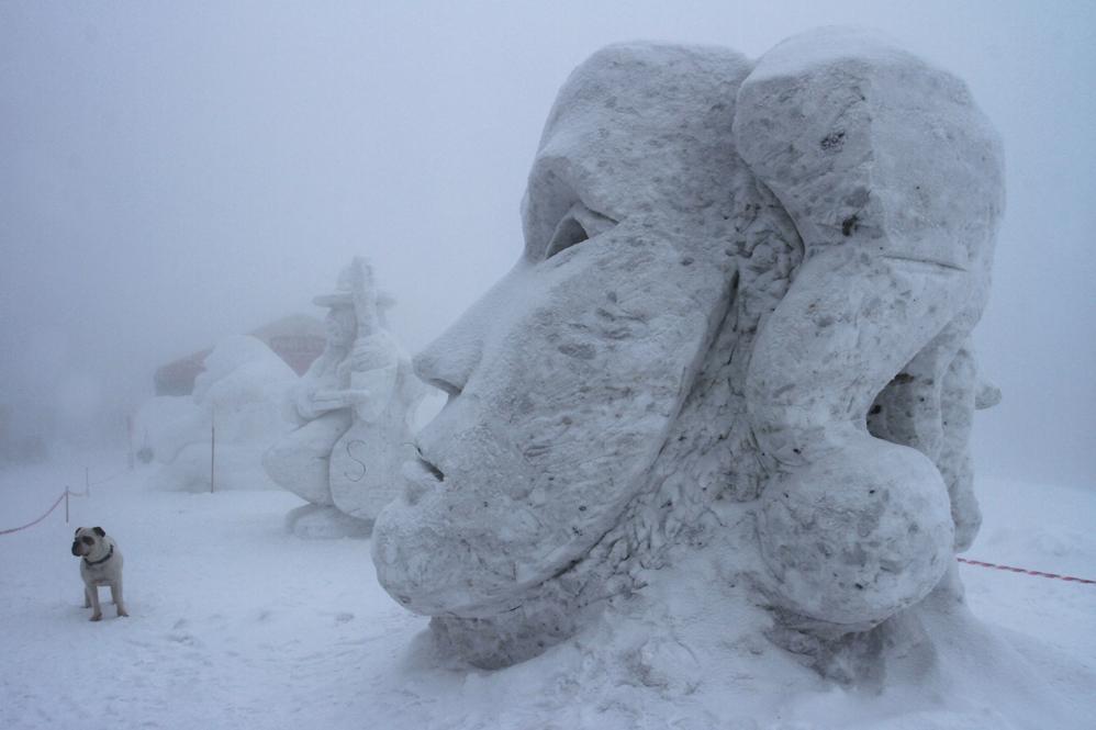 Снежное королевство 2013 - фото 4