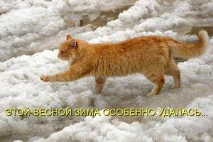 http://img-fotki.yandex.ru/get/5643/194408087.2/0_93ab4_9d71ce94_M.jpg