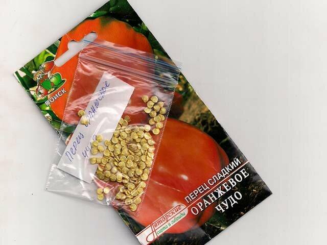 Как добыть семена болгарского перца?