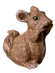 LottaDesigns_OldWorld_squirrel_1.png