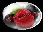 https://img-fotki.yandex.ru/get/5644/100773997.6ad/0_caaa1_ccd5c5e6_S