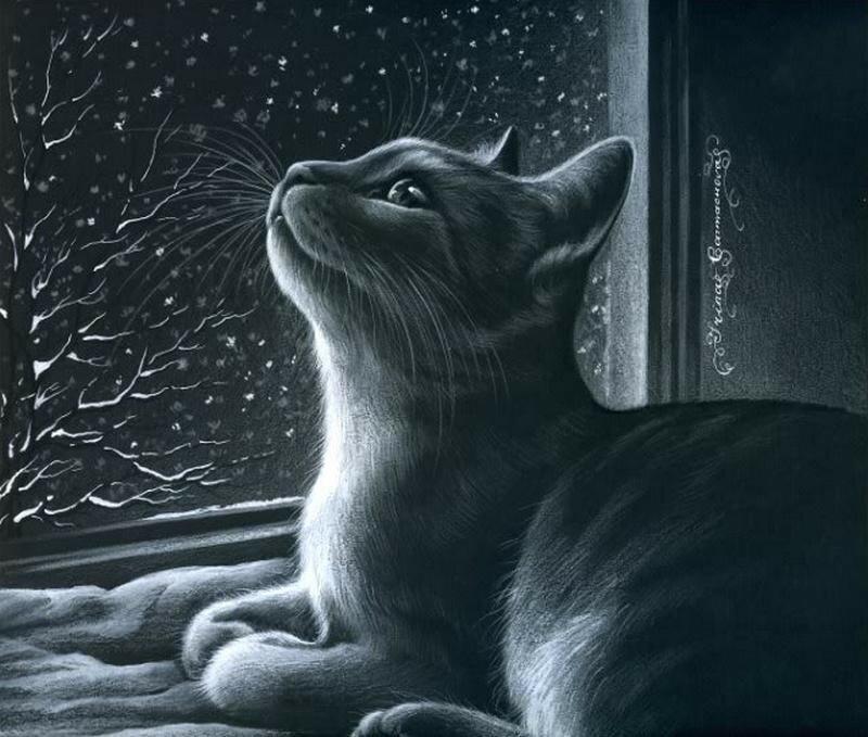 Ирина Гармашова. Кошки. Часть-
