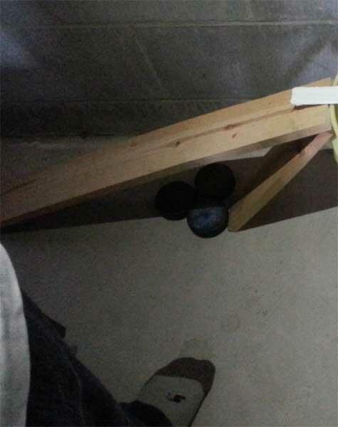 Простая и эффективная конструкция мышеловки: три мыша за одну ночь