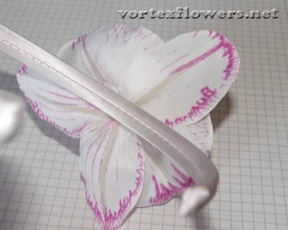 орхидея на ободке
