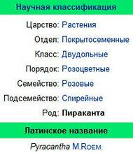 научная классификация Пираканты