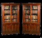 bookshelves13.png