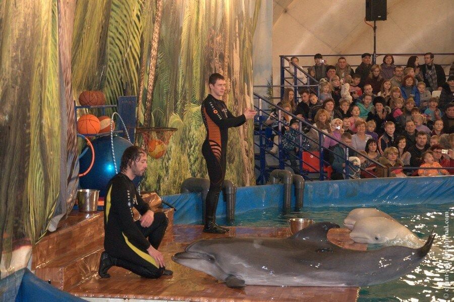 взять ипотеку дельфинарий в иркутске на комсомоле Мир любовью