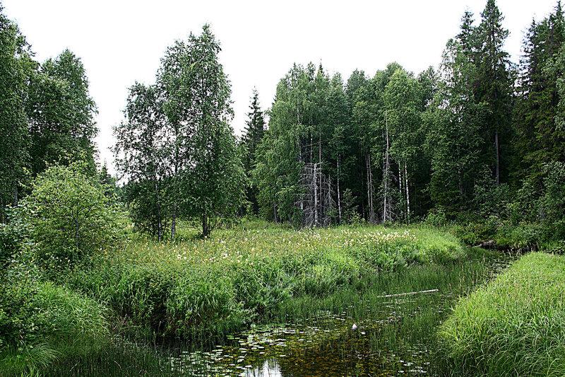 река Совза