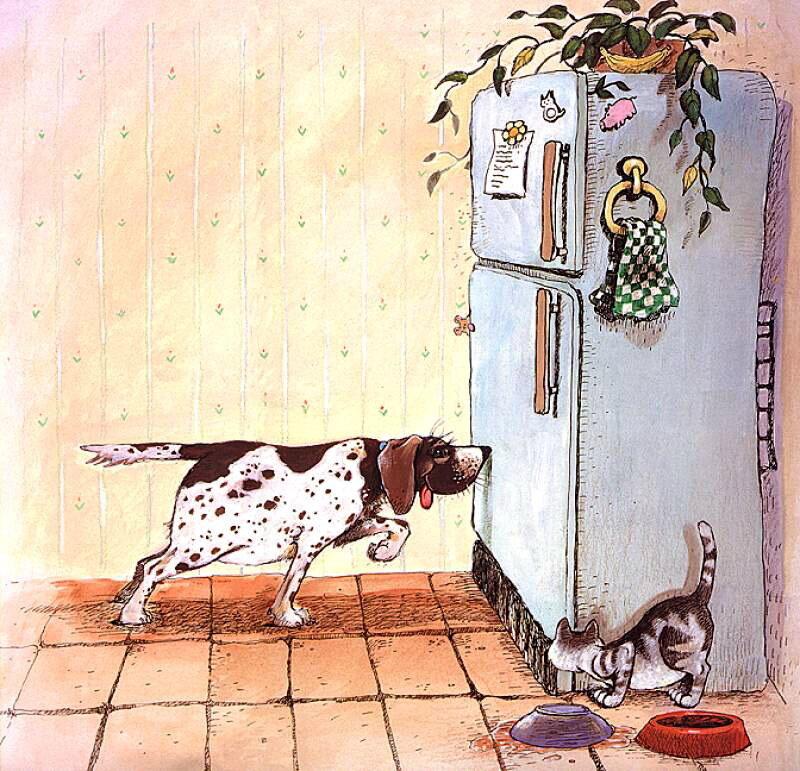 Рисунки прикольные котов и собака