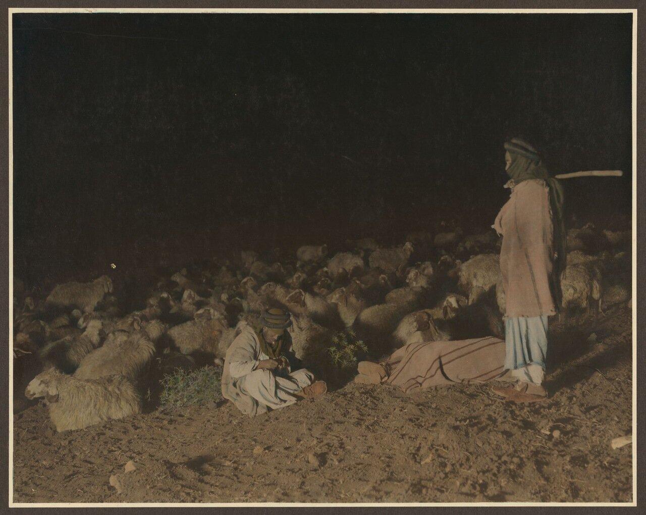 Пастухи с овцами ночью, 23-й псалом