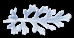 растения в снегу (7).png
