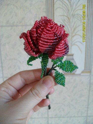 Подарок роза мне