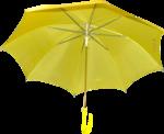 зонт (18).png