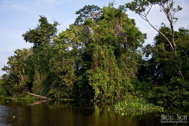 плывем по речке Кататумбо