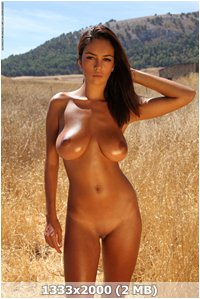 http://img-fotki.yandex.ru/get/5645/169790680.4/0_9d482_46da4836_orig.jpg
