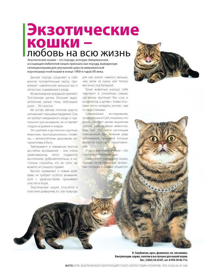 http://img-fotki.yandex.ru/get/5645/176414878.2/0_a6a05_fbd56157_XXXL.jpg
