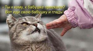 http://img-fotki.yandex.ru/get/5645/194408087.3/0_93c3b_134c2bf6_M.jpg