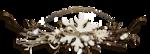 RR_WinterWhite_SideCluster (2).png