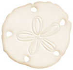 Flergs_By-The-Sea_Sand-Dollar.PNG