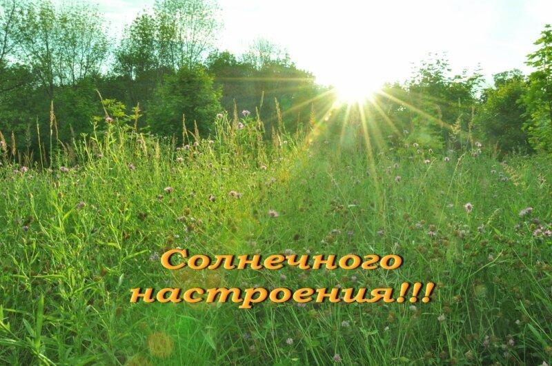 http://img-fotki.yandex.ru/get/5645/25708572.80/0_92690_f7da8c1c_XL.jpg