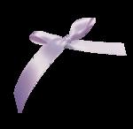 purpleribbon-(BrydkaM).png
