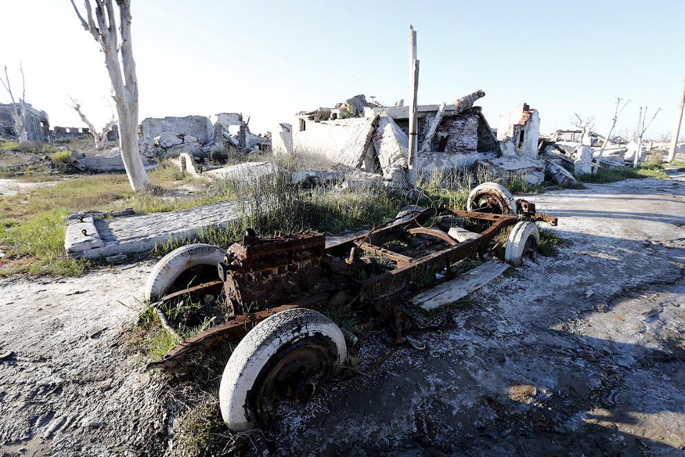 13. Восставшие из воды мертвые деревья. (Фото Enrique Marcarian   Reuters):