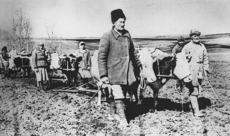 Колхоз «Октябрь» Каменец-Подольской (современная Хмельницкая) области. 1946