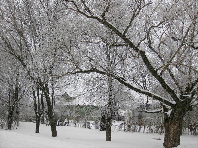 Улица в Голенищево