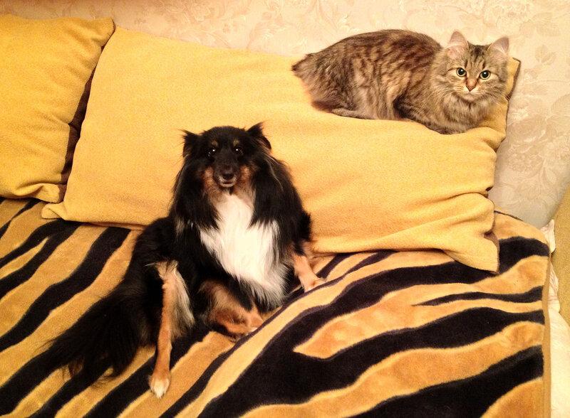 Шагри и Юмми, январь 2013