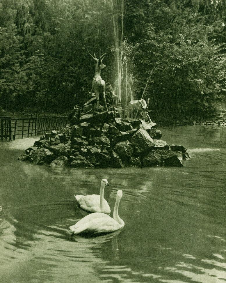 Київський зоосад