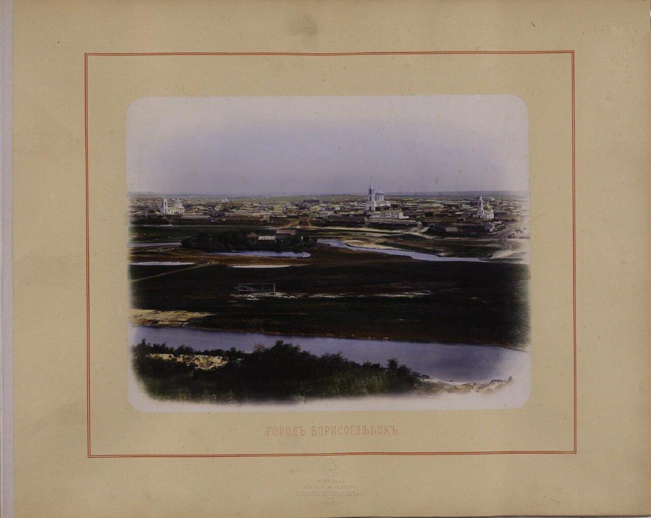 Город Борисоглебск. Ателье «Шерер и Набгольц». - 1869 г.
